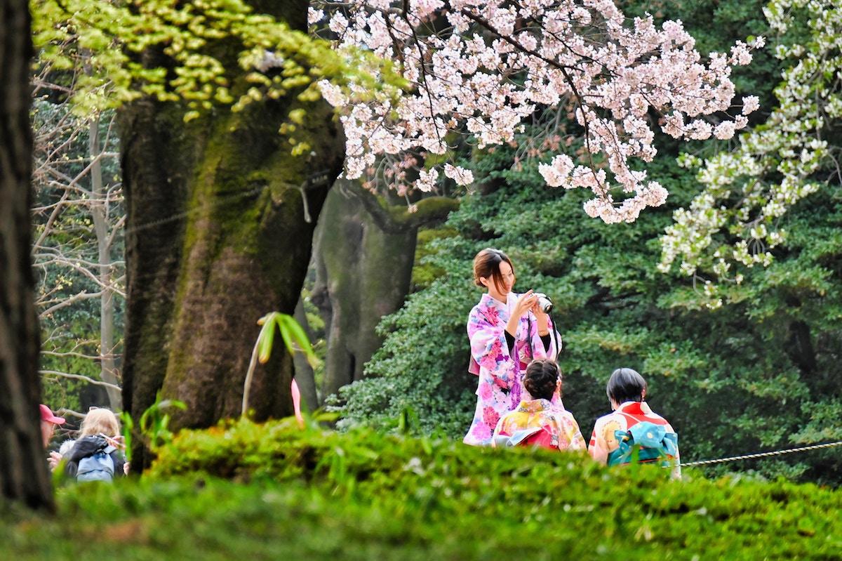 Assimil_kimono_giapponese